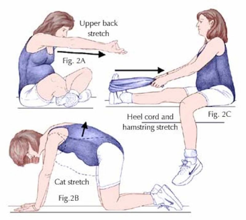 Exercise Guidelines For Pregnant Women 94